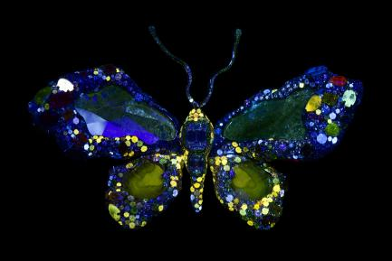 Cindy Chao Royal Butterfly Brooch - Fluorescent Front View