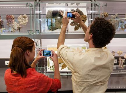 Q?rius - Museum Specimens