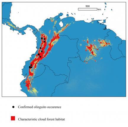 Olinguito Distribution Map