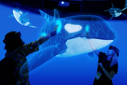 People interacting with augmented reality version of an orca