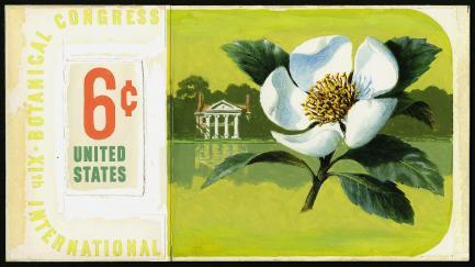 Stamp art showing magnolia flower