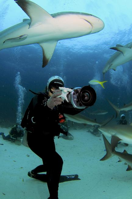 Still from Shark Girl