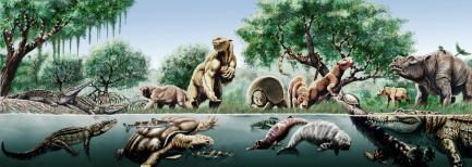 Artists rendering of dinosaurs