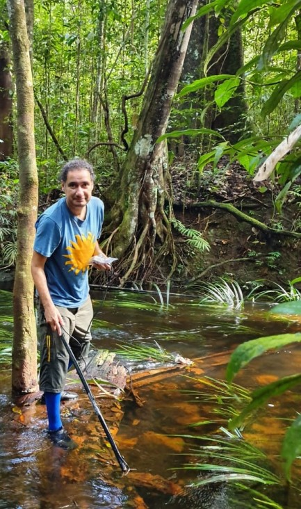 Man wades in shallow river surrounded by lush forest