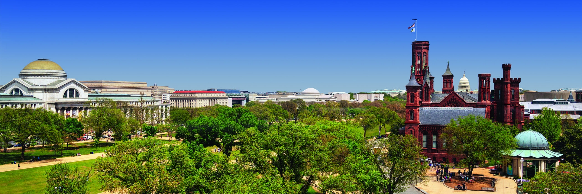 view of Castle and National Mall and Natural History Museum.