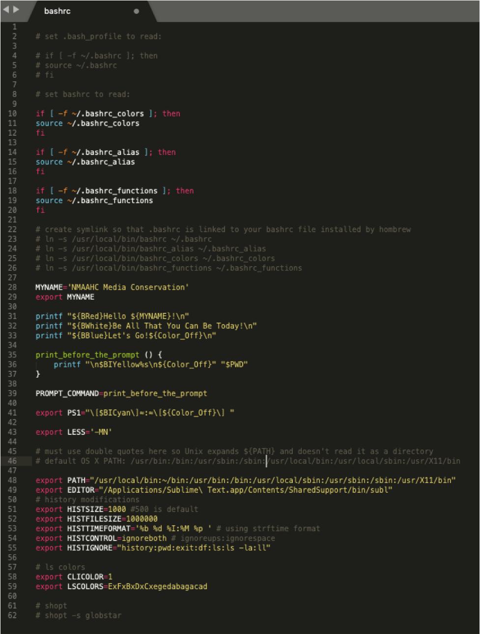 Screen capture of a basic bash computer programming file